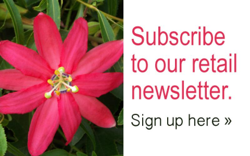 Subscribe to emerisa gardens